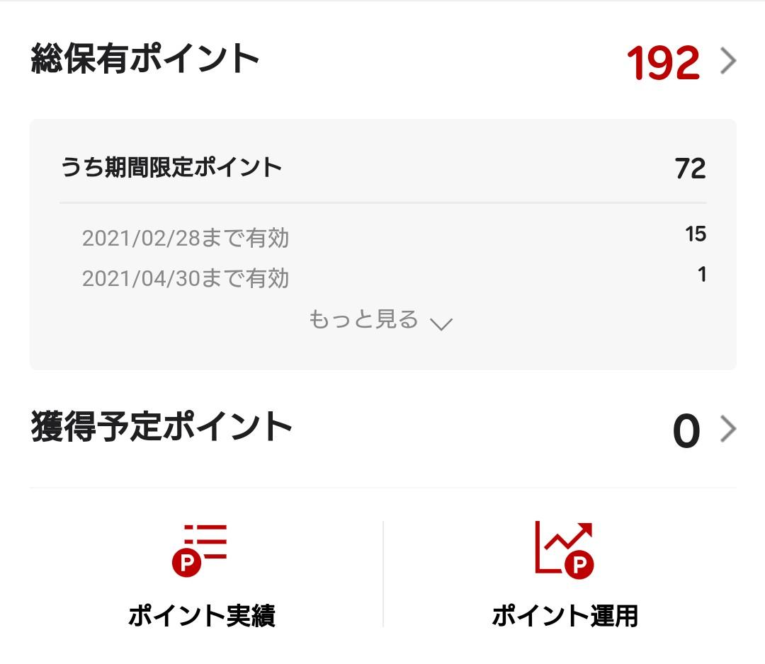 f:id:hinayuri2005:20210208100900j:plain