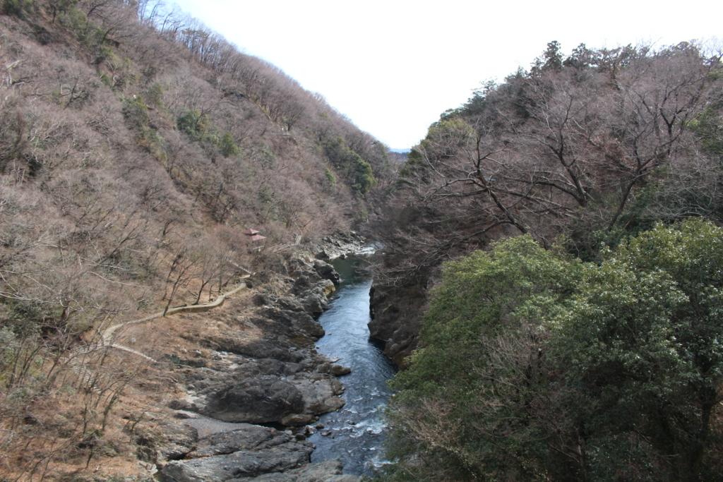 f:id:hinazakura8633:20180214133031j:plain