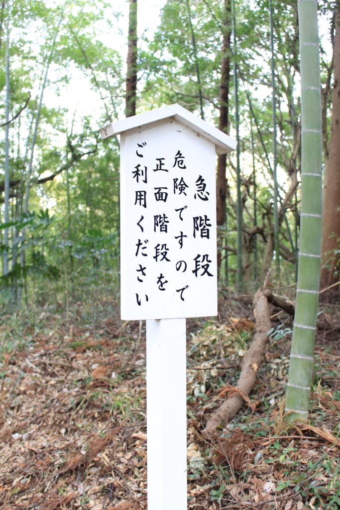f:id:hinazakura8633:20180520224826j:plain