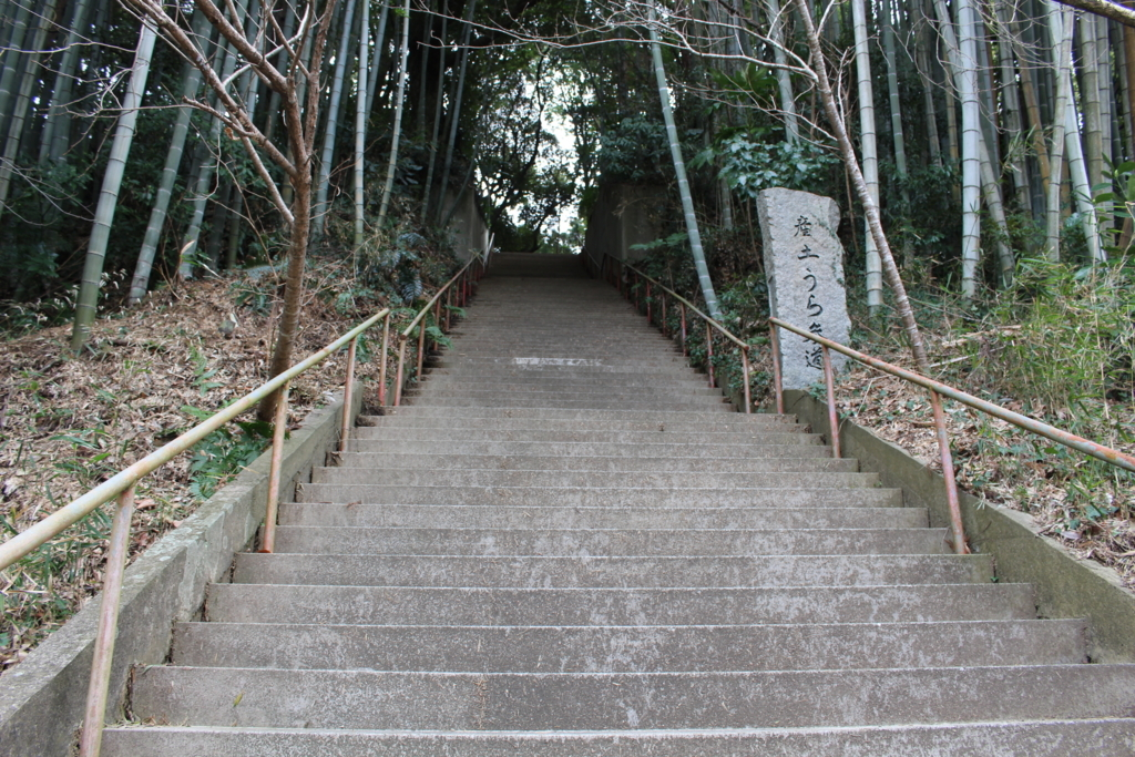 f:id:hinazakura8633:20180520225401j:plain