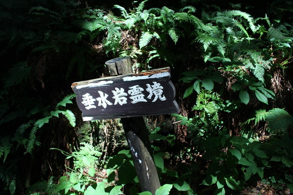 f:id:hinazakura8633:20180904193829j:plain