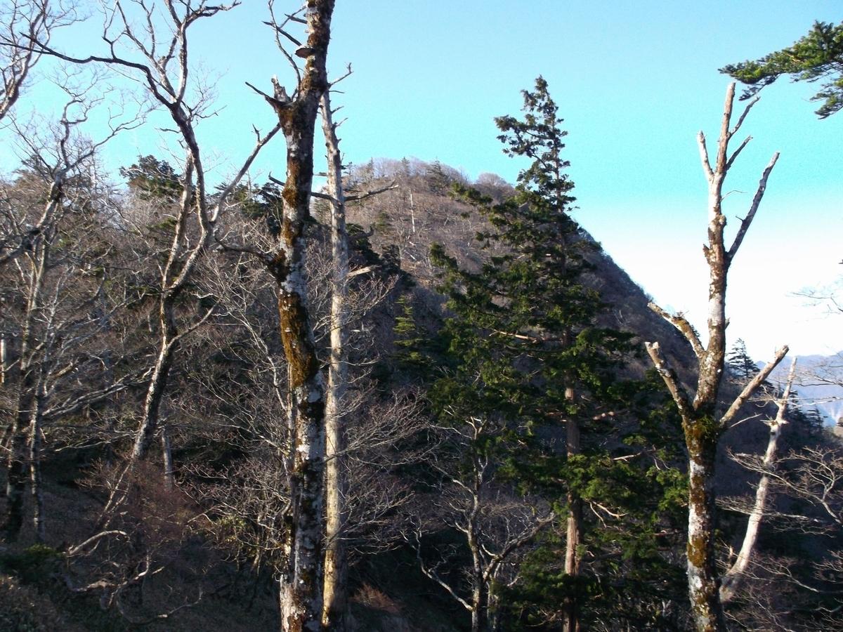 f:id:hinemosu_yamajii:20160430065019j:plain