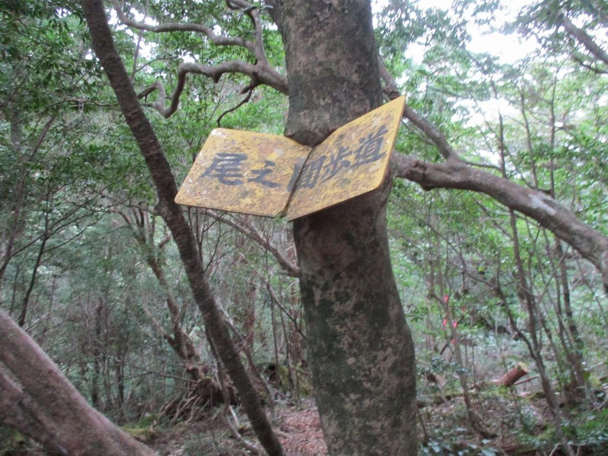 f:id:hinemosu_yamajii:20200128133432j:plain
