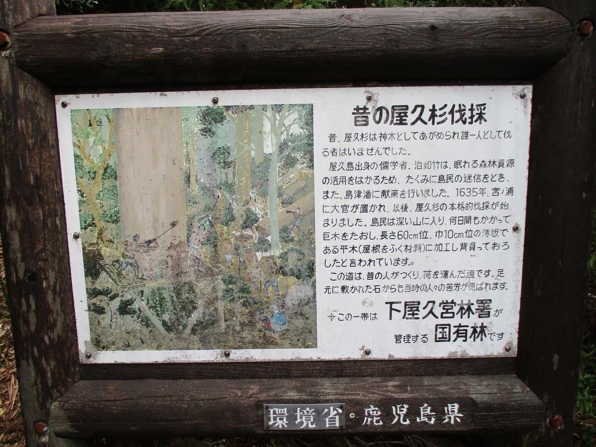 f:id:hinemosu_yamajii:20200128133649j:plain