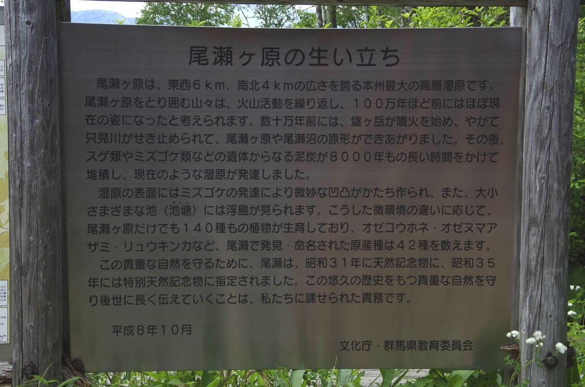 f:id:hinemosu_yamajii:20200628143019j:plain