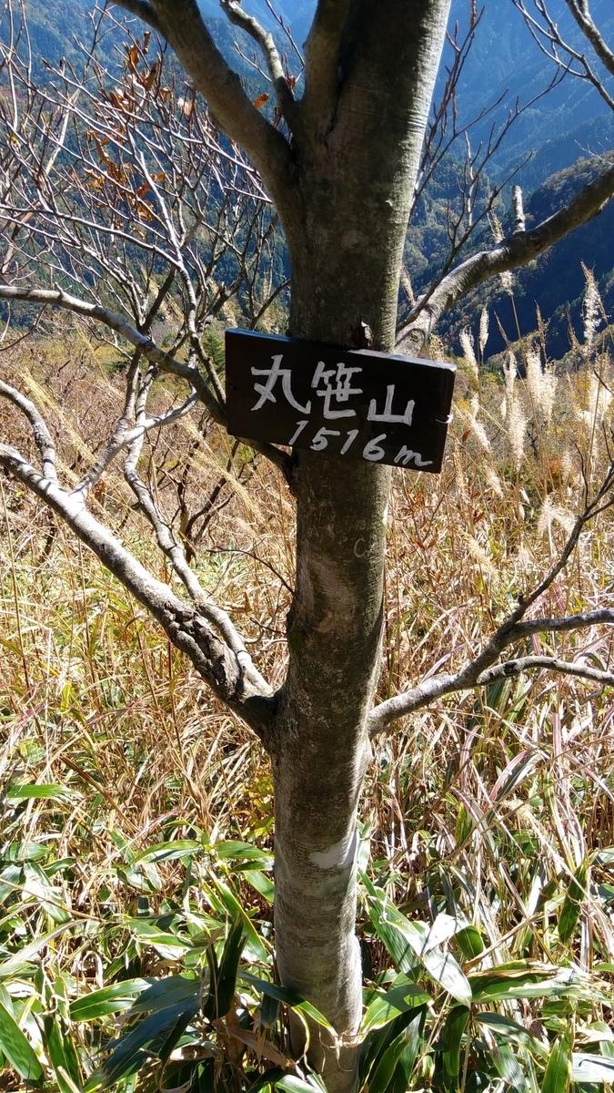 f:id:hinemosu_yamajii:20201027223003j:plain