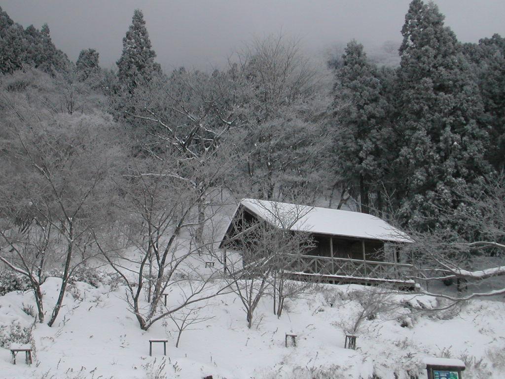 f:id:hinemosu_yamajii:20210417102403j:plain
