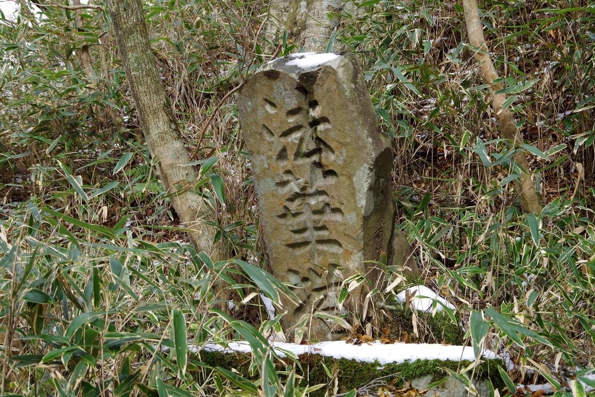 f:id:hinemosu_yamajii:20210417103732j:plain