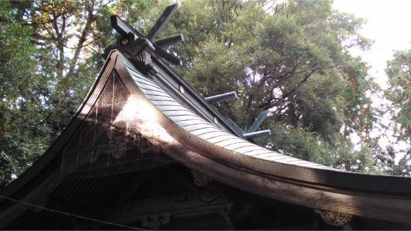草薙神社の本殿の屋根