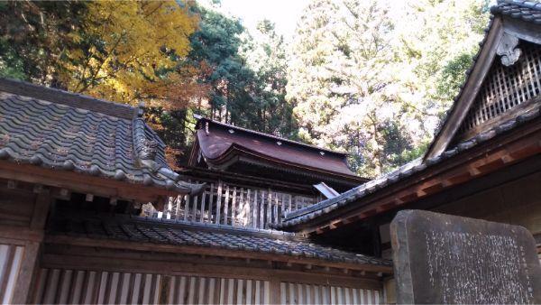武田八幡宮の拝殿と本殿、石碑
