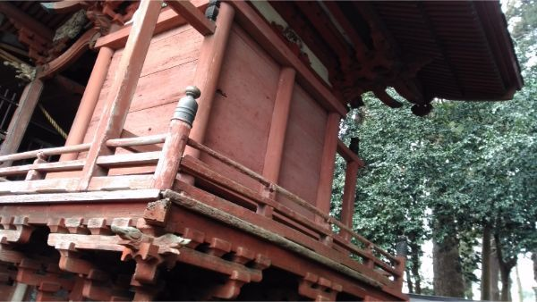 諏訪神社本殿の右後方