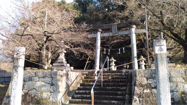 氷川神社の境内入口