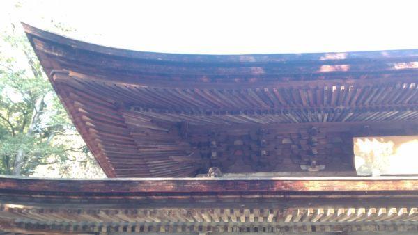 定光寺本堂の垂木