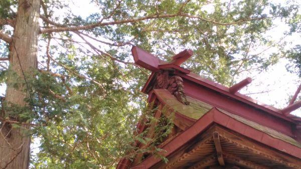 諏訪神社本殿の棟