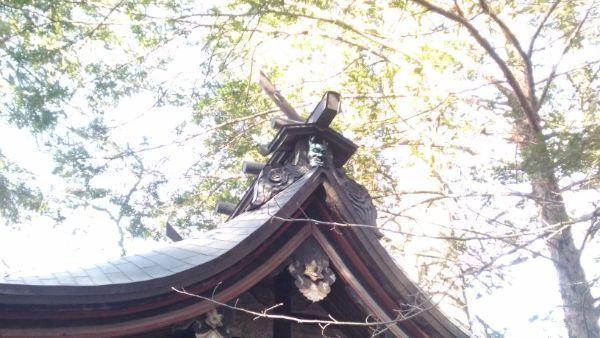 住吉神社本殿の大棟