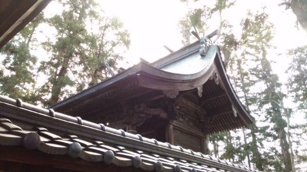 治田神社本殿の屋根