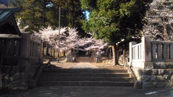 坂城神社の境内
