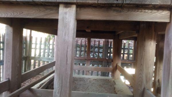白山比咩神社本殿の床下