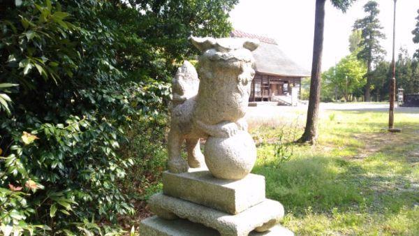 天津神社の狛犬