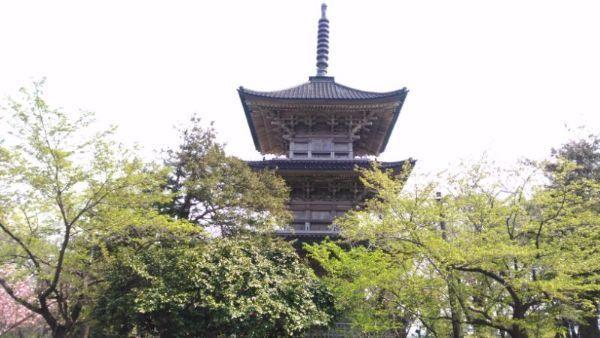 五智国分寺三重塔
