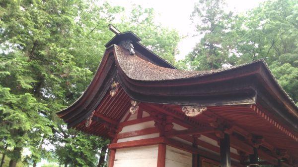 若宮八幡神社本殿の屋根
