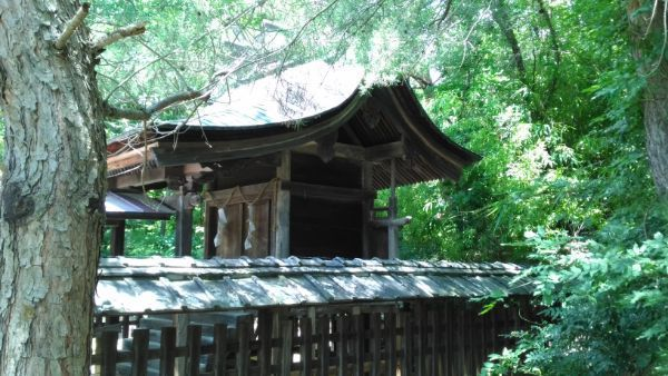 塩野神社本殿