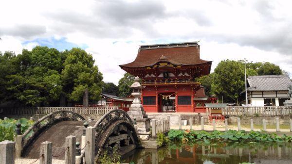 伊賀八幡宮蓮池
