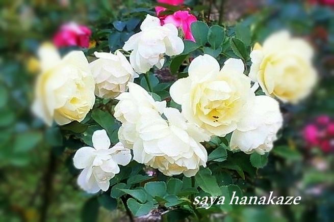f:id:hinoatarusakamiti:20181122182319j:plain