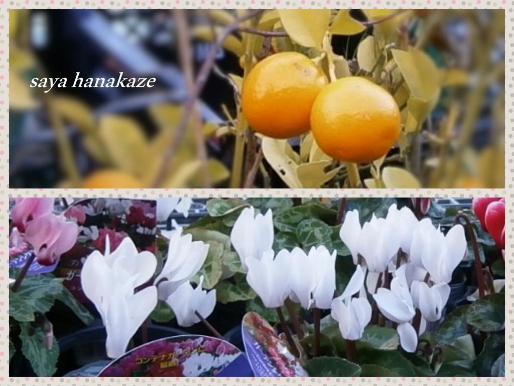 f:id:hinoatarusakamiti:20181221131951j:plain