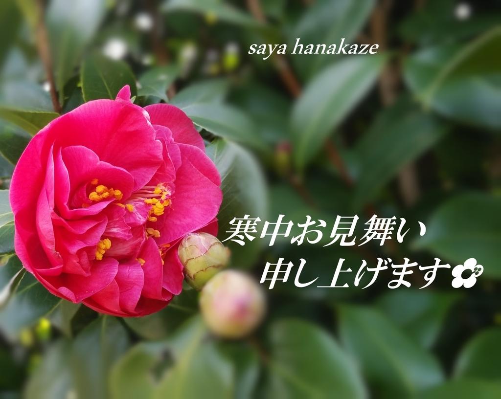 f:id:hinoatarusakamiti:20190106155058j:plain