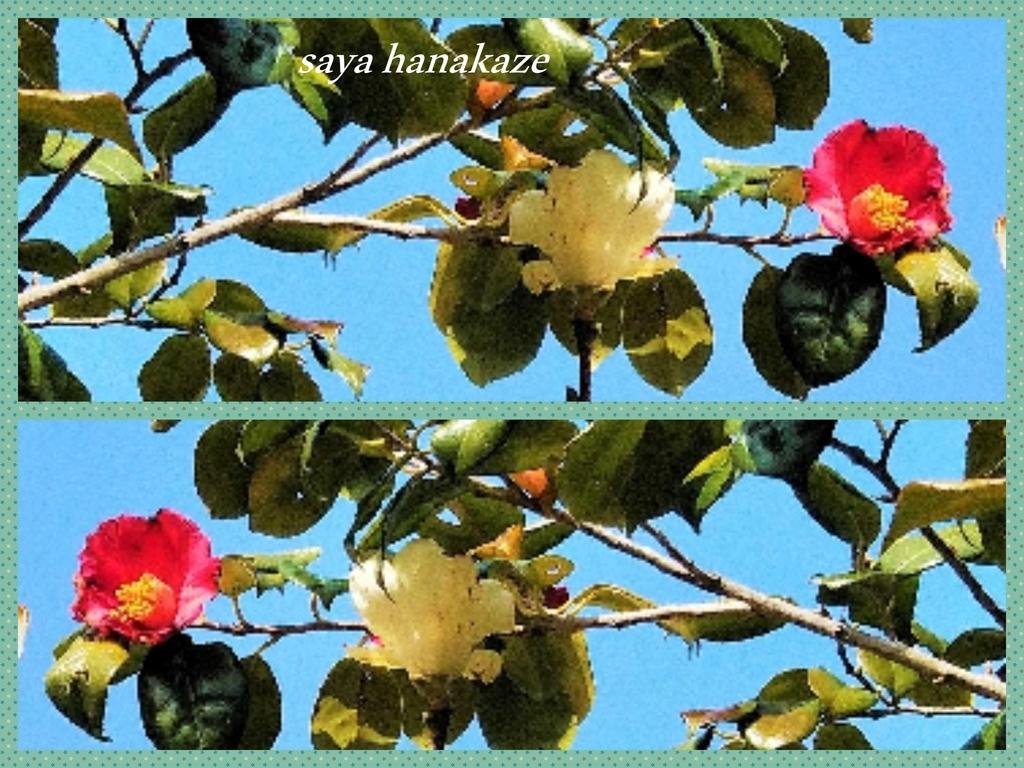 f:id:hinoatarusakamiti:20190208051559j:plain