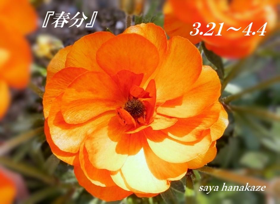f:id:hinoatarusakamiti:20190320221807j:plain