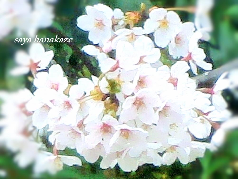 f:id:hinoatarusakamiti:20190326230412j:plain