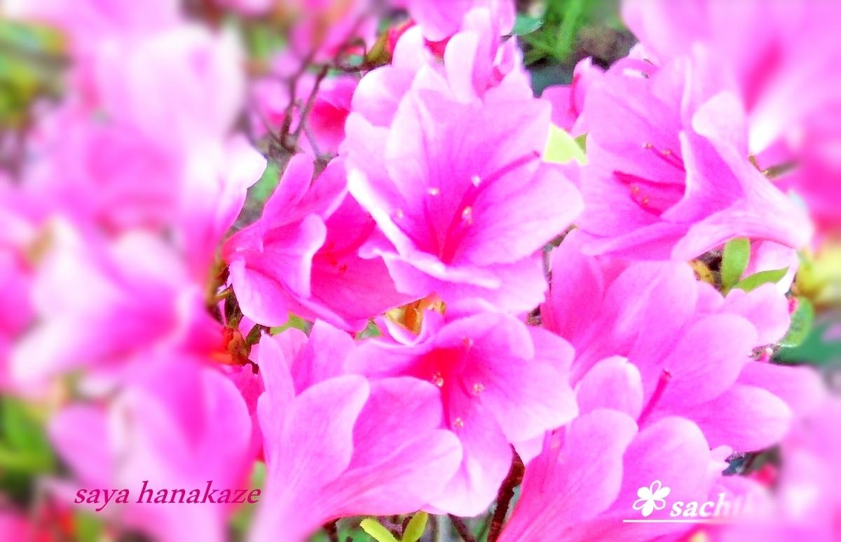 f:id:hinoatarusakamiti:20190415045630j:plain