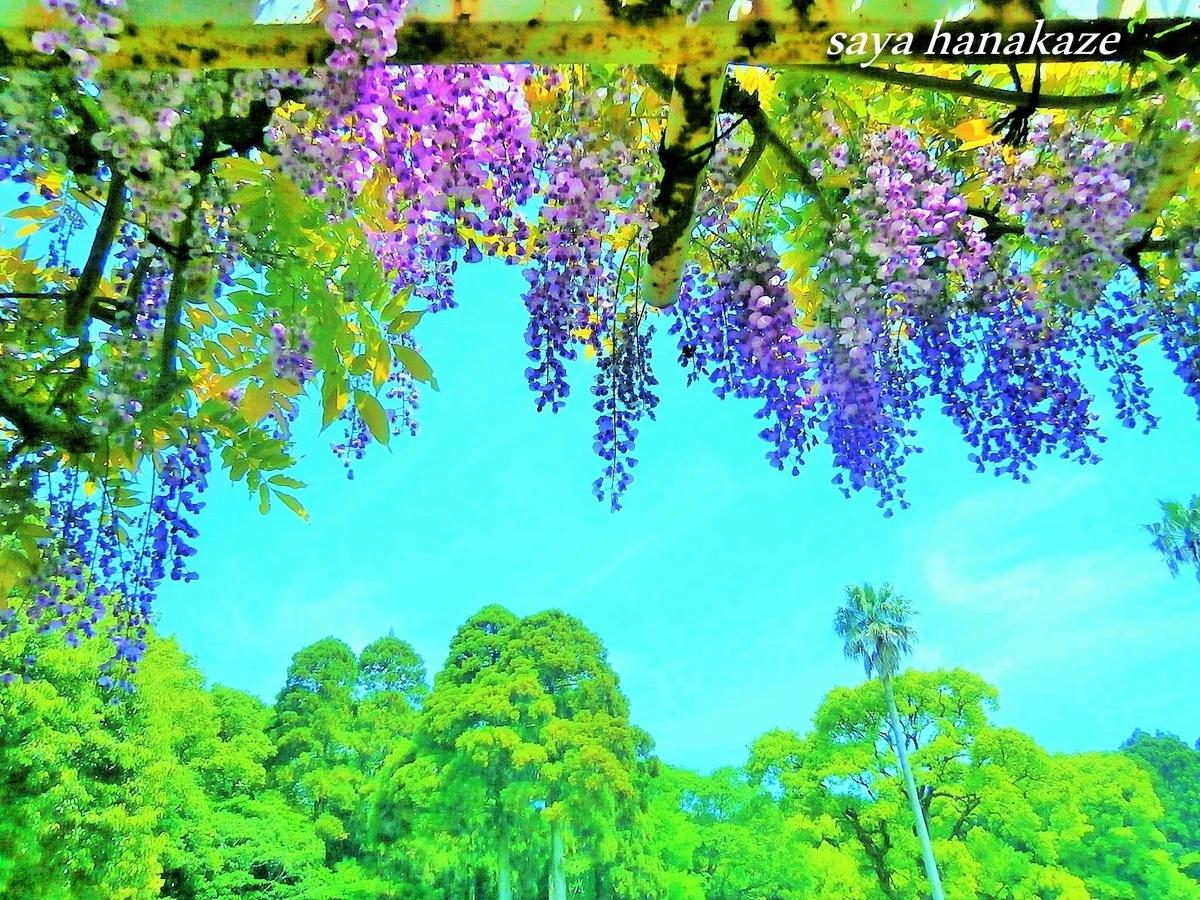 f:id:hinoatarusakamiti:20190506230200j:plain