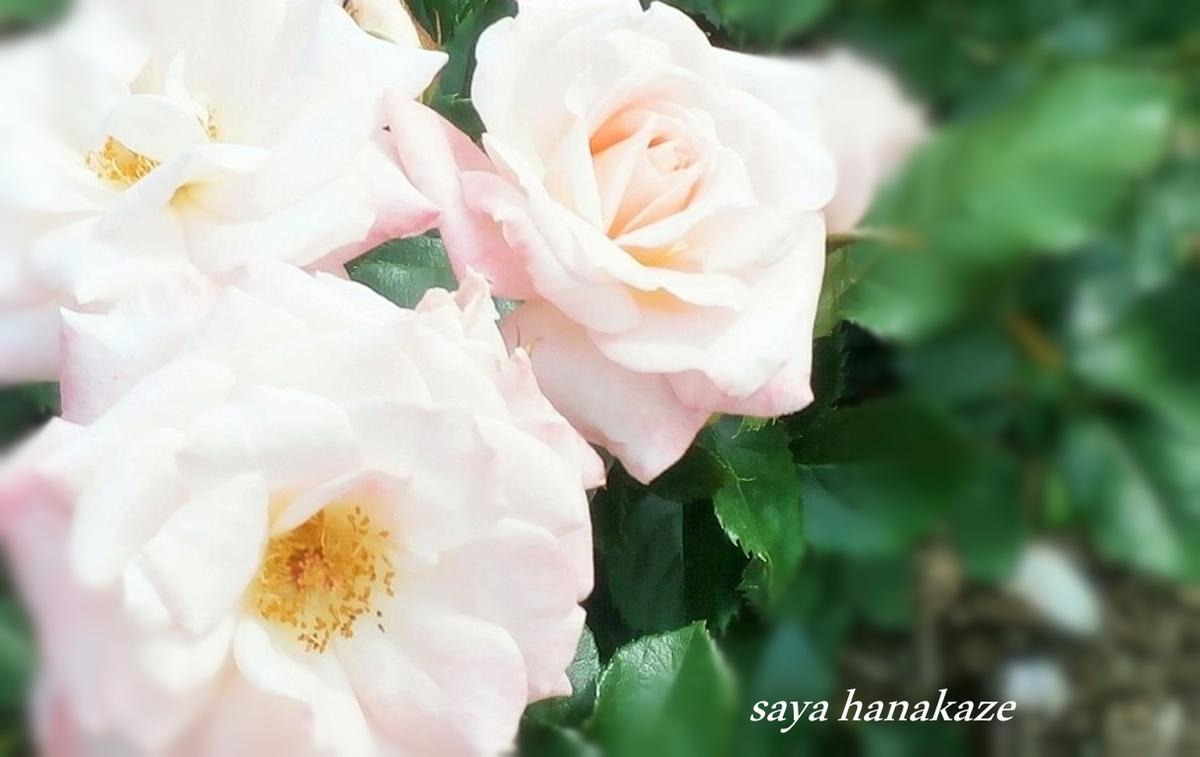 f:id:hinoatarusakamiti:20190521011745j:plain