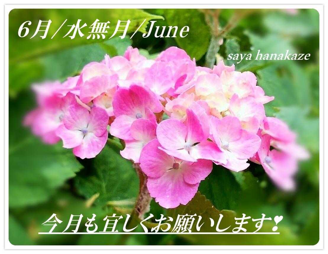 f:id:hinoatarusakamiti:20190601052355j:plain