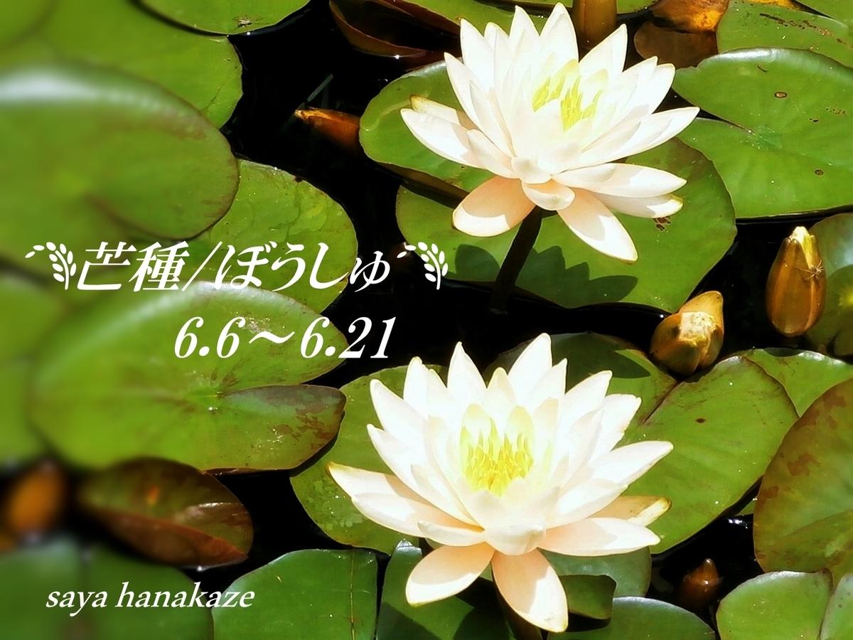 f:id:hinoatarusakamiti:20190606053934j:plain