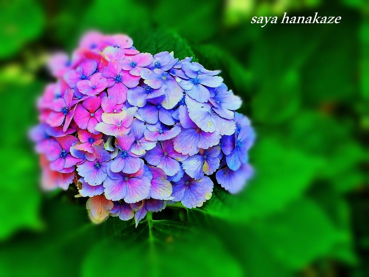 f:id:hinoatarusakamiti:20190616124950j:plain
