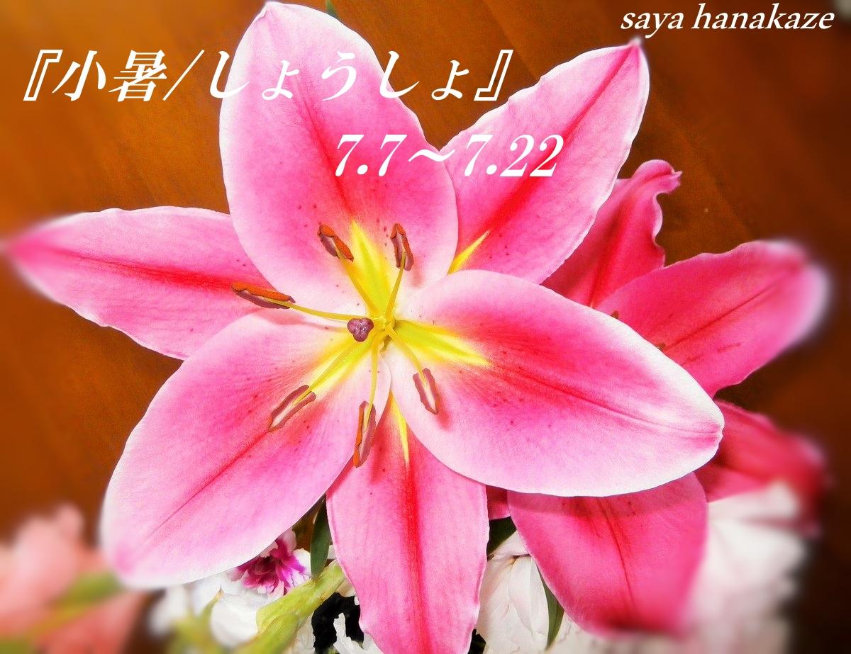 f:id:hinoatarusakamiti:20190705022538j:plain