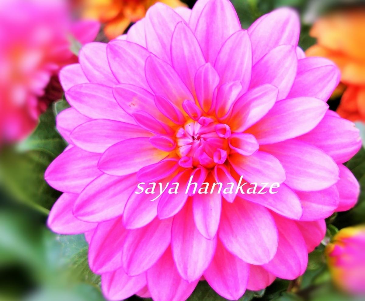 f:id:hinoatarusakamiti:20190712023346j:plain