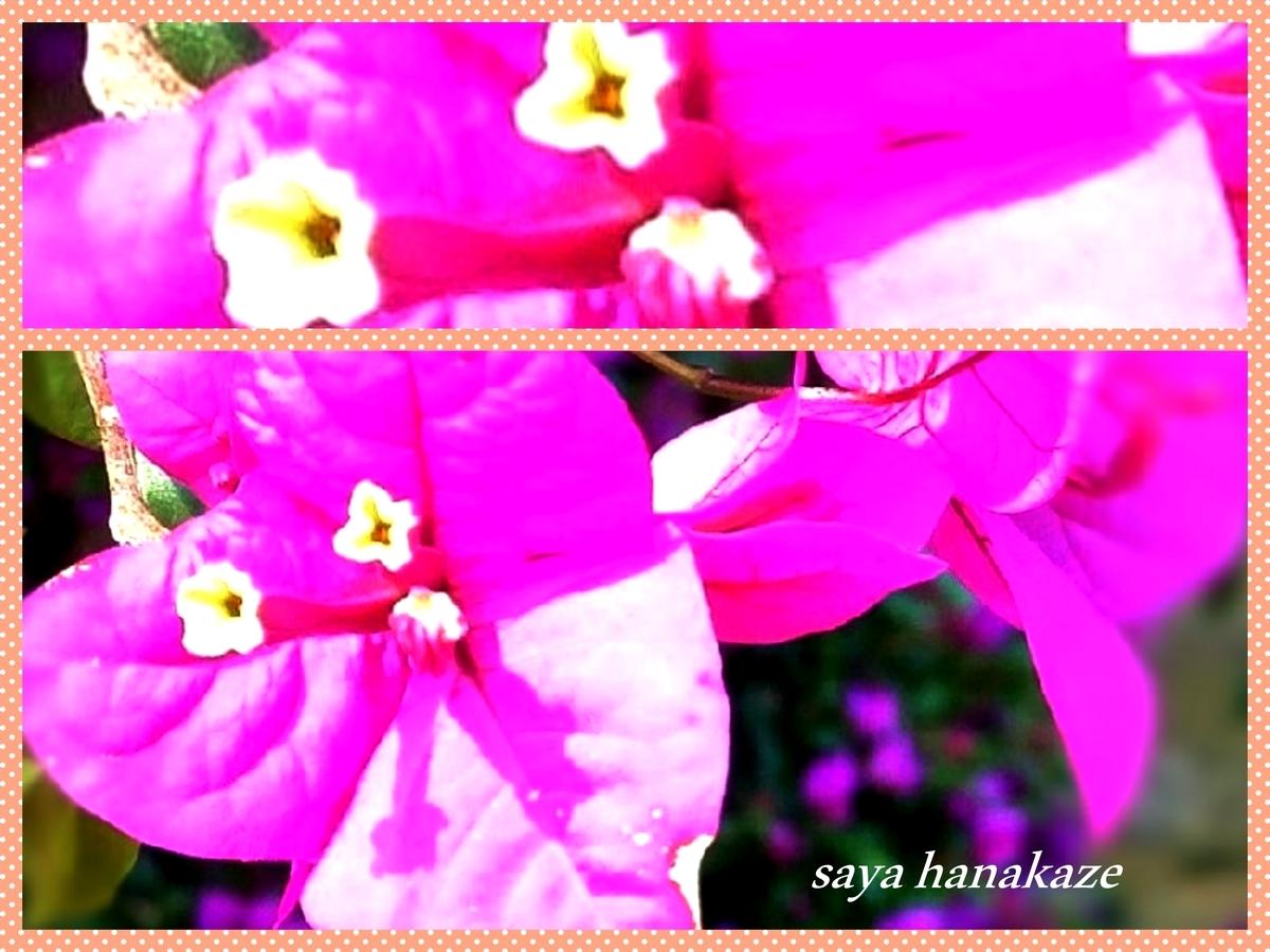f:id:hinoatarusakamiti:20190822205942j:plain