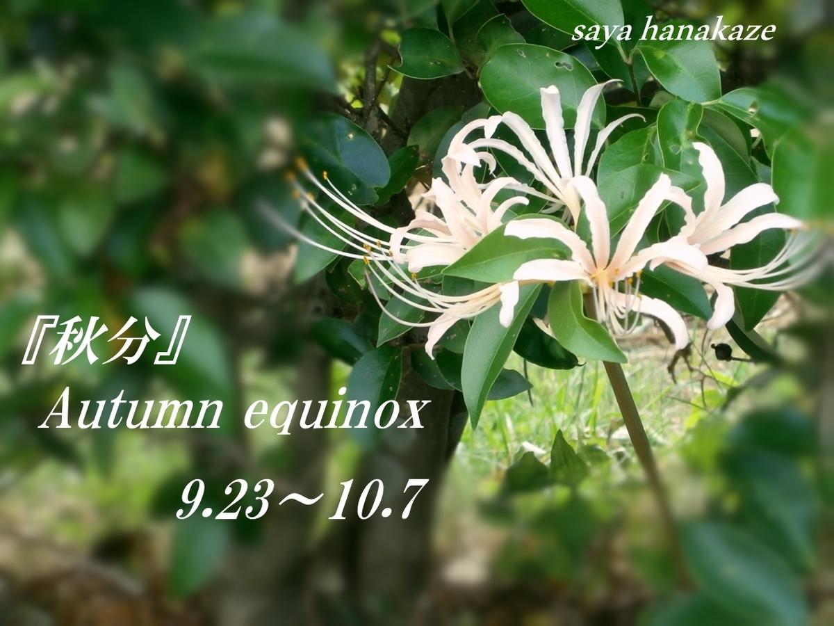 f:id:hinoatarusakamiti:20190922224134j:plain