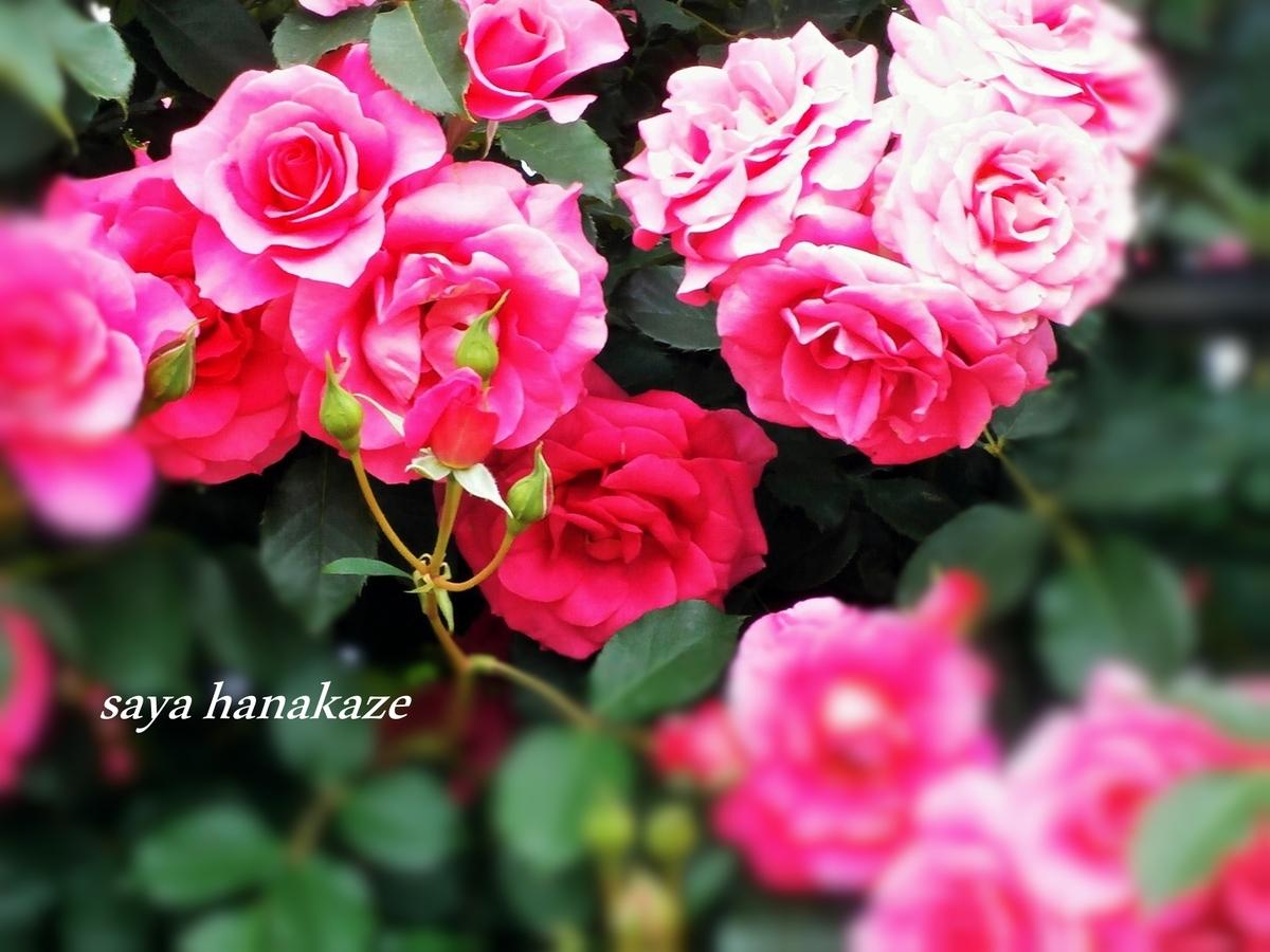 f:id:hinoatarusakamiti:20190930222459j:plain
