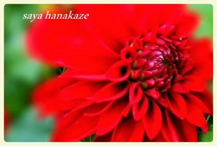 f:id:hinoatarusakamiti:20191215225450j:plain