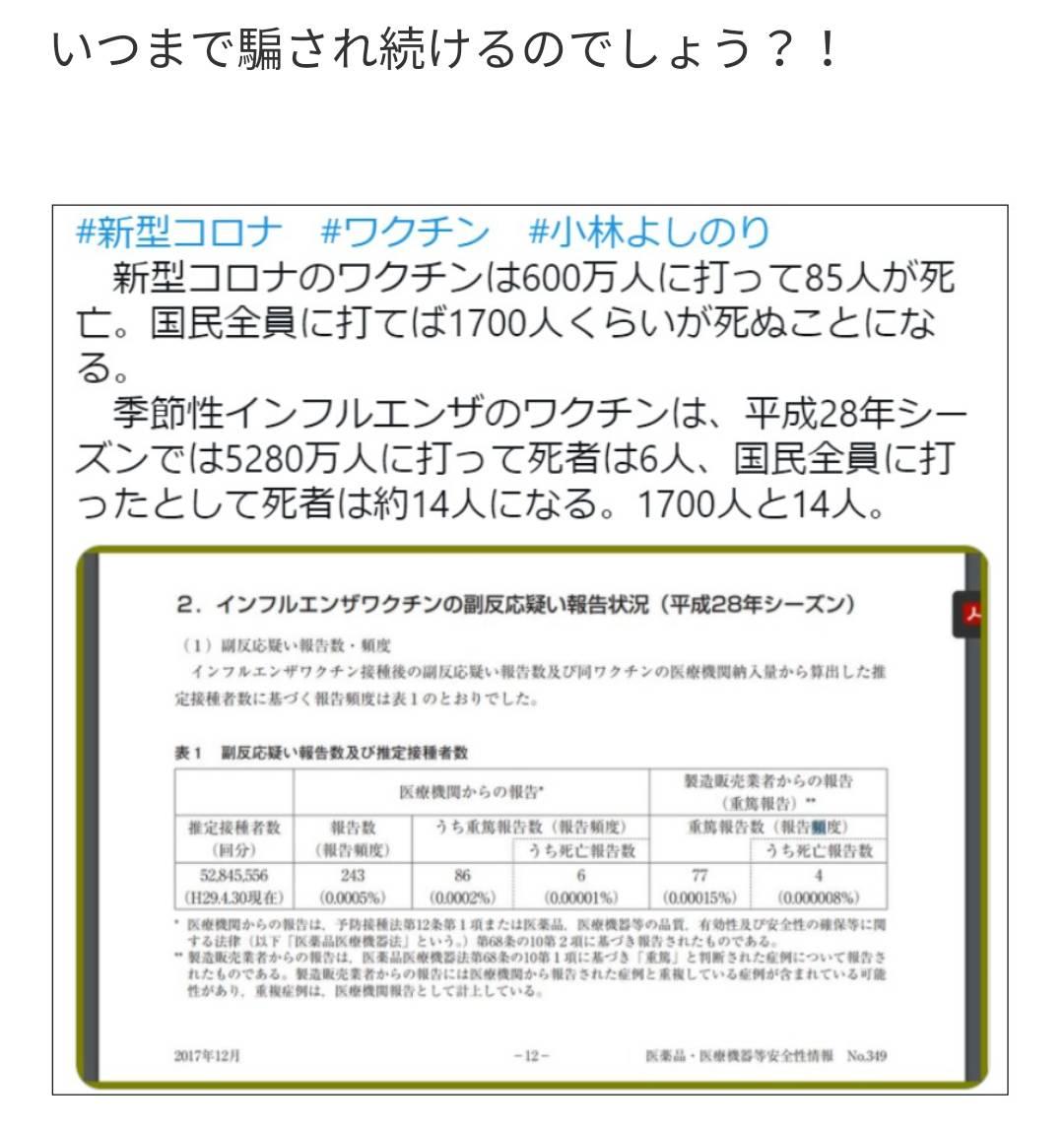 f:id:hinode_shinshi:20210611141636j:plain