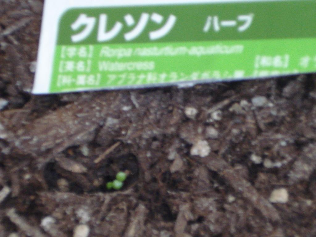 f:id:hinokazu3z:20180826105416j:plain