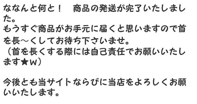 f:id:hinoki_kaonashi:20200407150216j:plain