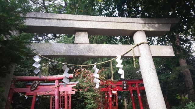 f:id:hinoki_kaonashi:20201115175953j:plain