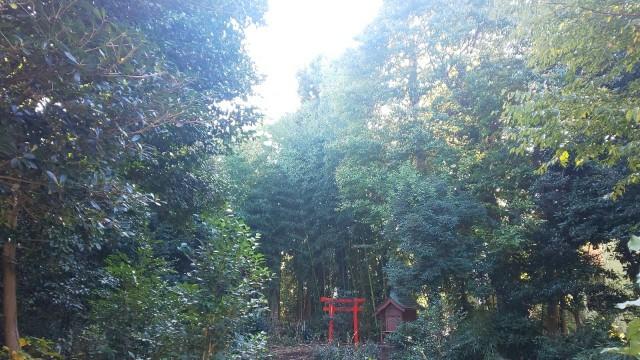 f:id:hinoki_kaonashi:20201123183902j:plain